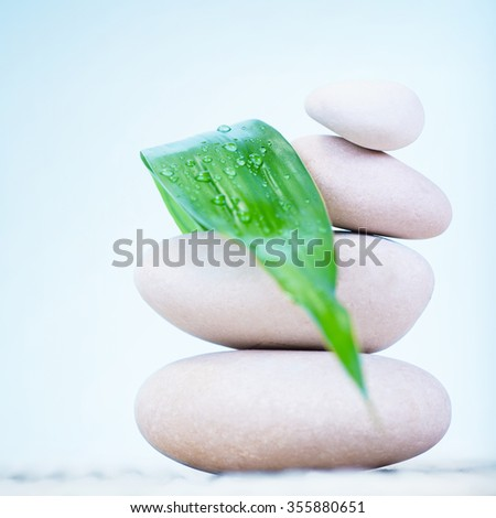 Beautiful still life of spa stones over blue sky background, dew drops on fresh green leaf, zen balance, calmness and harmony concept - stock photo
