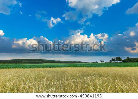 Beautiful stormy sky over fields in Poland. Summer landscape with cloudy blue sky.