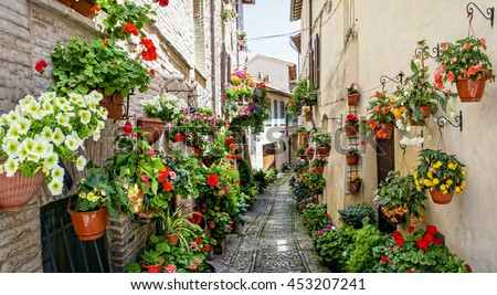 Beautiful street decoration with flowers in medieval town Spello - stock photo