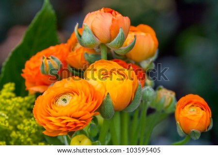 Beautiful summer bunch of flowers. Floral pattern. Peony.