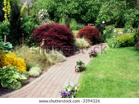 Beautiful summer garden with a lot of plant species - stock photo