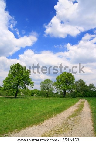 Beautiful summer landscape and dirt road