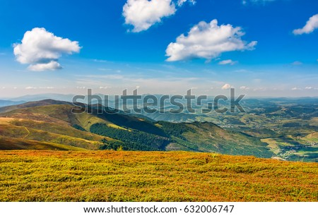 beautiful summer landscape. forest and grassy meadow on a hillside of mountain ridge
