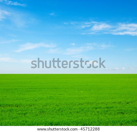 beautiful summer landscape. grass and sky. - stock photo