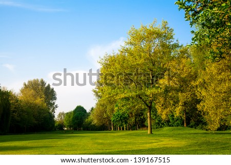 Beautiful summer landscape. green field and trees - stock photo
