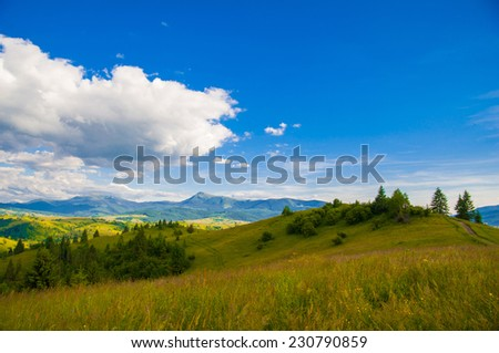 Beautiful summer landscape in the mountains, Carpathian