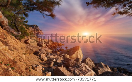 Beautiful summer landscape on the sea. Sunset