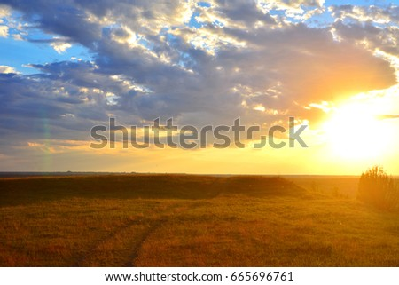 Beautiful summer landscape. Road and grass on a sunset background. Sky