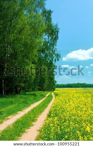 Beautiful summer landscape. Road in field and wood - stock photo