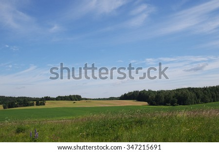Beautiful summer landscape under high, blue sky with clouds.