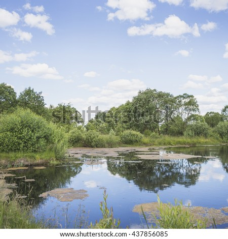 Beautiful summer landscape with a pond