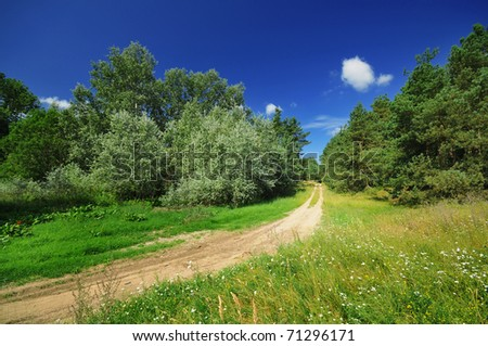 Beautiful summer landscape with a sandy path - stock photo