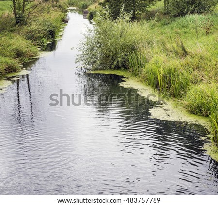 Beautiful summer landscape with a small river