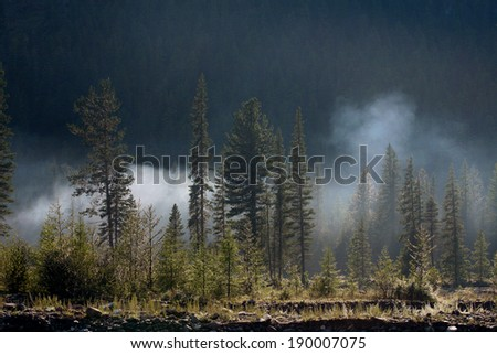 beautiful summer mountain landscape forests and and white smoke against a background of taiga - stock photo