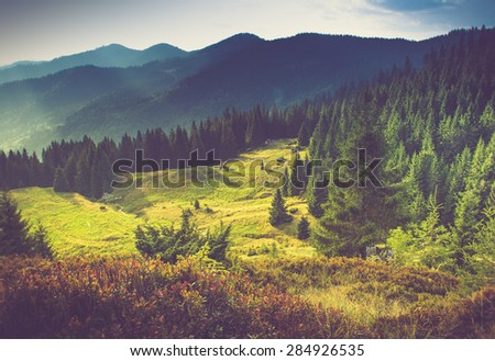 Beautiful summer mountain landscape.Tourist tents near forest. Filtered image:cross processed vintage effect. - stock photo