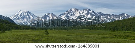 Beautiful summer panoramic view of the volcanoes of Kamchatka: Koryaksky Volcano, Arik Volcano and Aag Volcano; mountains and green forest. Russia, Far East, Kamchatka Peninsula.