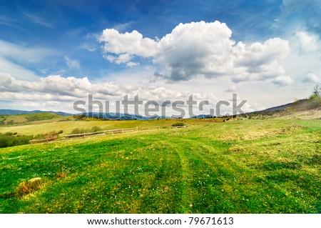 Beautiful summer pastoral landscape - stock photo