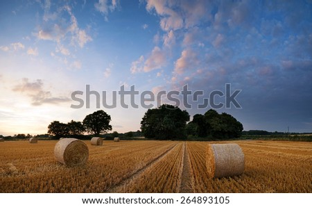 Beautiful Summer sunset landscape over field of hay bales - stock photo