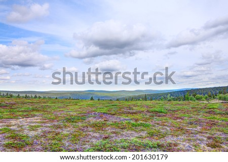 Beautiful summer tundra landscape in Lapland, Finland - stock photo