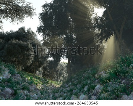 Beautiful sunbeams in green forest background - stock photo