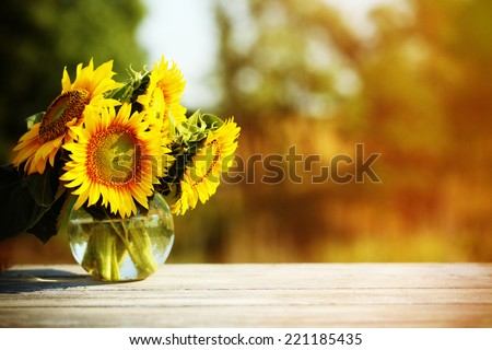 Beautiful sunflowers on table on bright background - stock photo