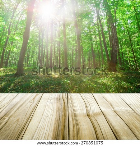 Beautiful sunlight in the green forest with wood planks floor - stock photo