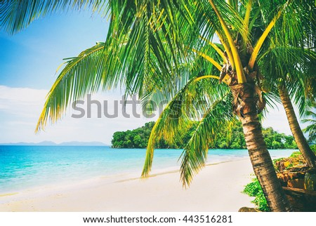 Beautiful sunny beach. View of nice tropical beach with palms around. Holiday and vacation concept. Vintage photo. - stock photo