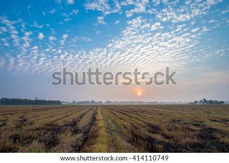 Beautiful sunrise over barren fields. - stock photo