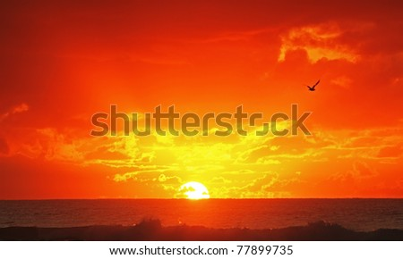 Beautiful Sunrise Over Ocean - stock photo