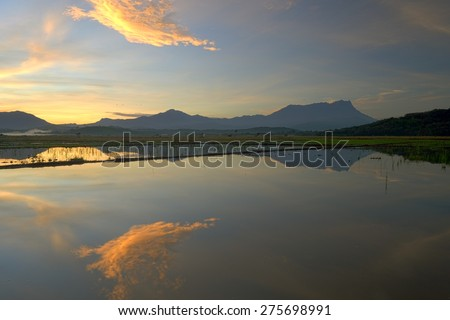 Beautiful sunrise with Mount Kinabalu at the background in Kota Belud, Sabah, East Malaysia, Borneo