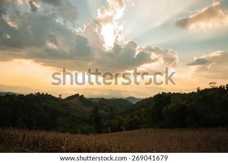 Beautiful sunset and gold sky - stock photo