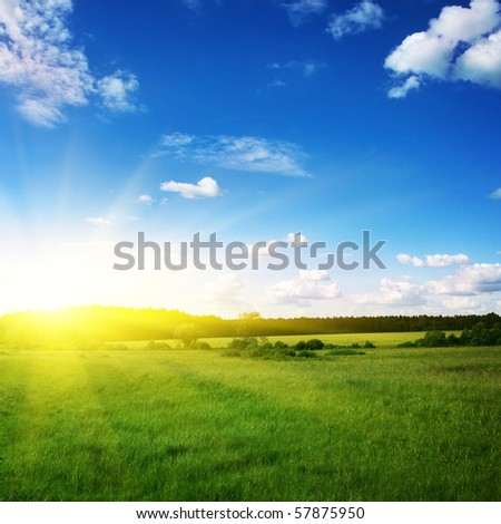 Beautiful sunset and green field. - stock photo