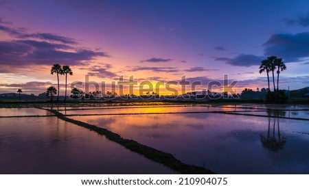beautiful sunset and twilight sky  - stock photo