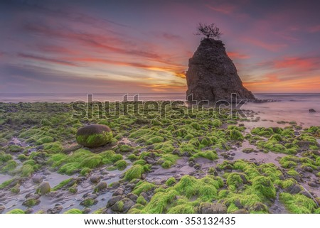 Beautiful sunset at Borneo beach at low tide exposing the mossy green rocks on the reef shelf. Malaysia. Focus to foreground - stock photo