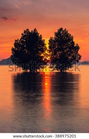 Beautiful sunset at the krabi - stock photo