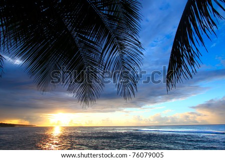 Beautiful sunset framed by palm fronds on the west coast of Puerto Rico - stock photo