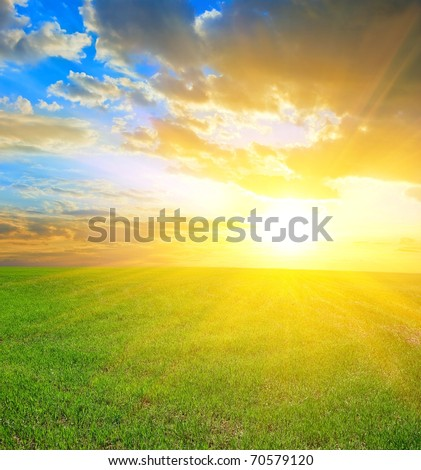 beautiful sunset in a green fields - stock photo
