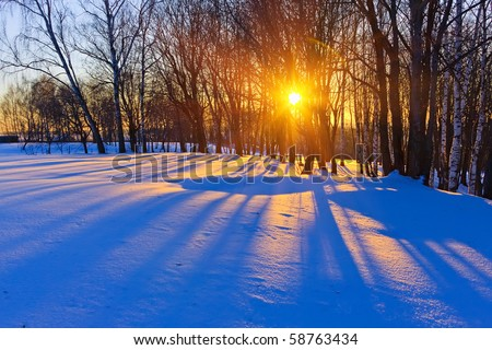 Beautiful sunset in a winter forest, Russia - stock photo