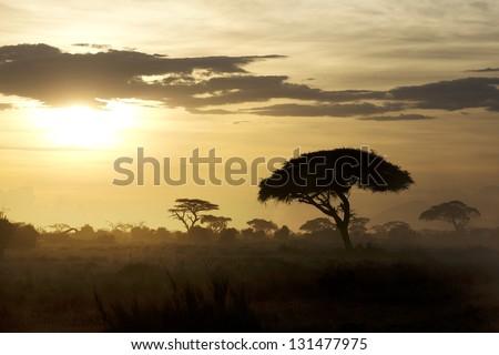 Beautiful sunset in Amboseli National Park 09 - stock photo