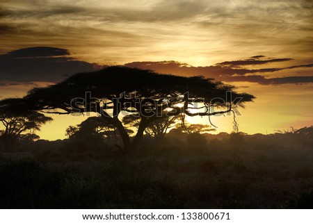 Beautiful sunset in Kenya 10