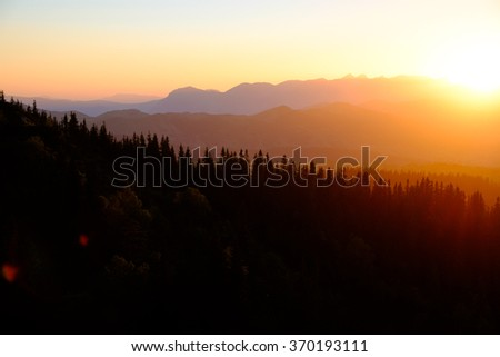Beautiful sunset in mountains with silhouette of fir-trees. Summer sundown. Wonderful nature background. - stock photo