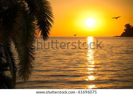 Beautiful sunset on seashore - stock photo