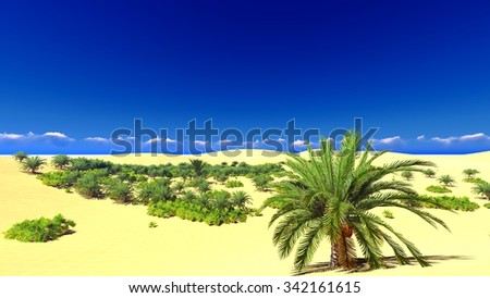 Beautiful sunset on the Sahara  desert - stock photo