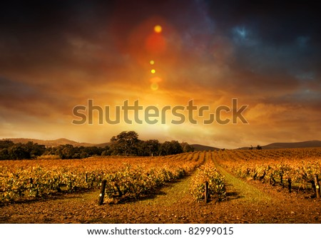 Beautiful sunset over Barossa Valley sunset in Autumn - stock photo