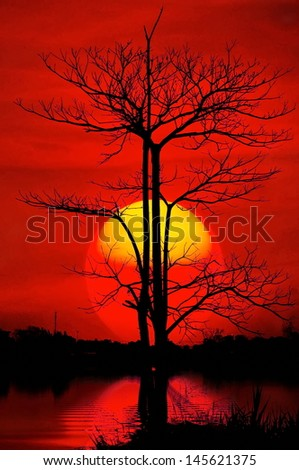 Beautiful sunset over the liver with tree  - stock photo