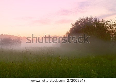 Beautiful sunset over the meadow in a foggy summer day - stock photo