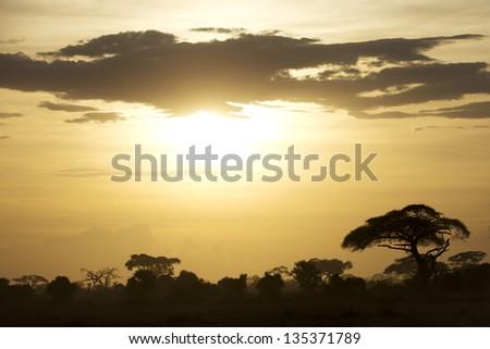 Beautiful sunset over the savannah in Kenya 04 - stock photo