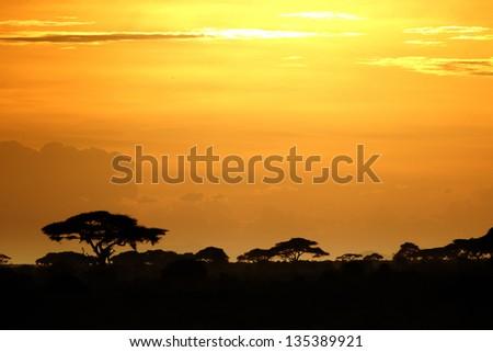 Beautiful sunset over the savannah in Kenya 02 - stock photo