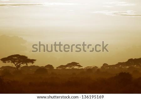 Beautiful sunset over the savannah in Kenya 01 - stock photo