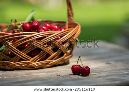 beautiful sweet cherry fruit in a basket